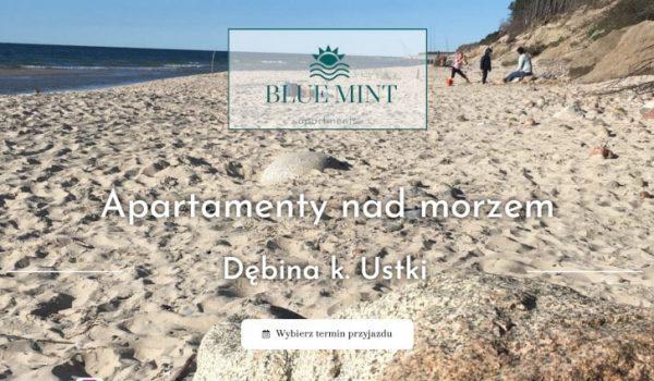 Realizacja-bluemint-min